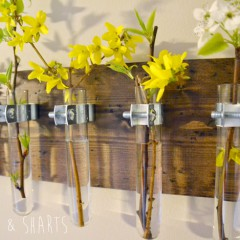 Hanging Test Tube Wall Planter | Hearts & Sharts | www.heartsandsharts.com