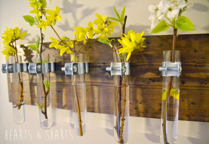 Hanging Wall Planter hanging test tube wall planter | hearts & sharts