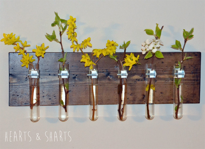 Hanging-Test-Tube-Wall-Planter-17