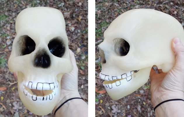 Plastic Thrift Store Skull | Hearts & Sharts